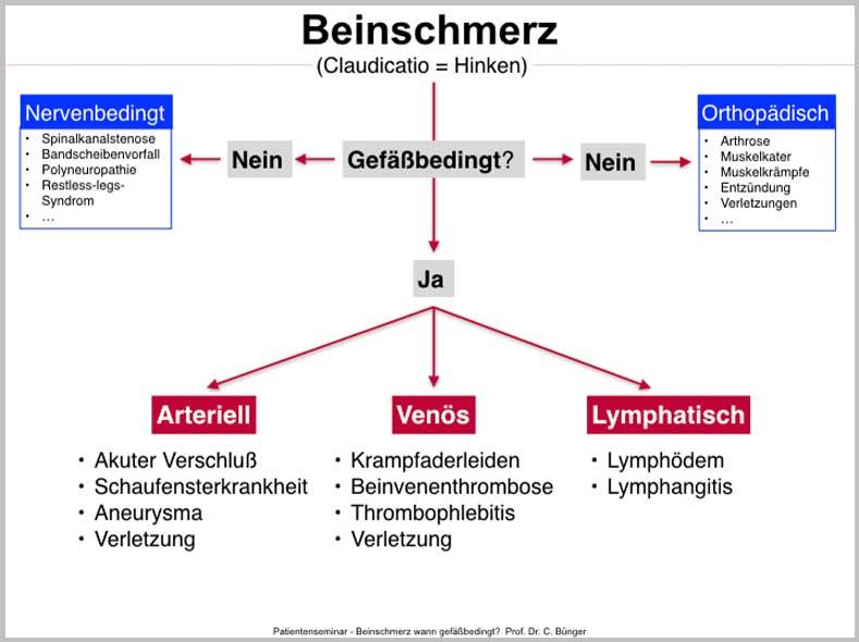 Beinschmerz-Ursachen